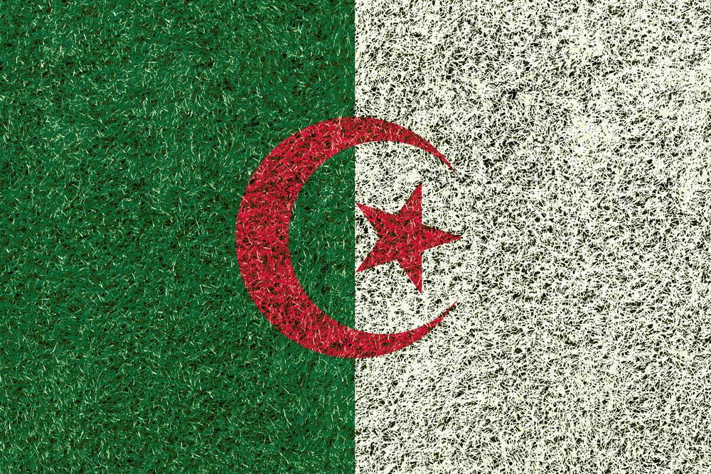 Как самому оформить визу в Алжир для россиян в 2018 году