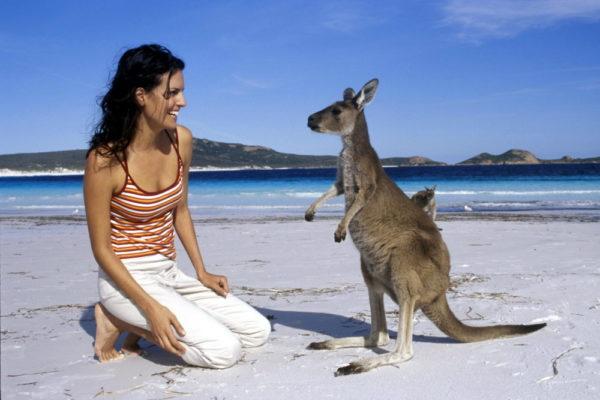 Девушка и кенгуру