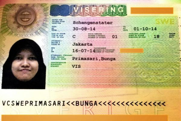 Шенгенская виза типа С